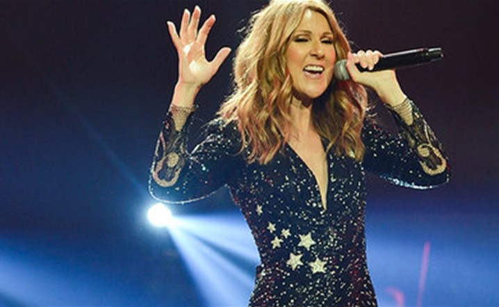 Celine Dion Stopped Her Final Vegas Show Because Of A Fan