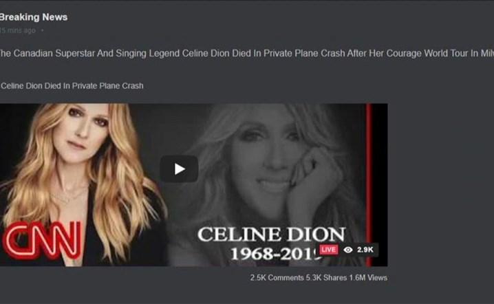 ما حقيقة خبر وفاة سيلين ديون بتحطّم طائرة؟