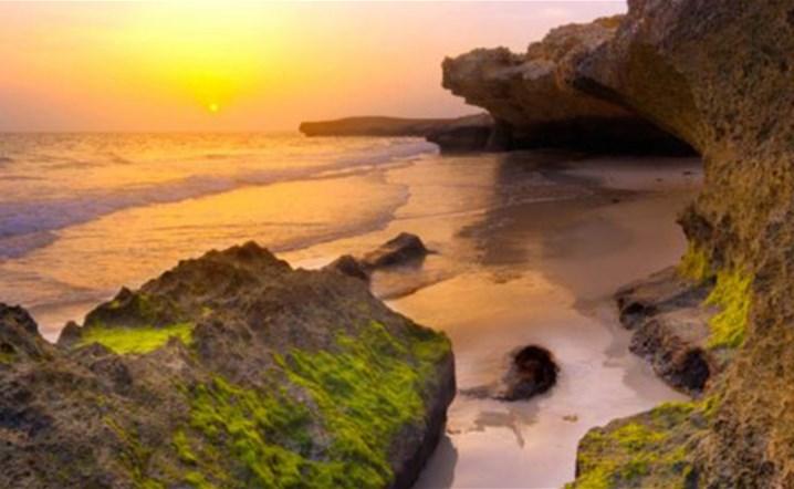 السياحة في السعودية: أبرز الوجهات التي تعكس جمال الطبيعة الخضراء