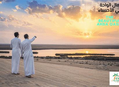 The beautiful Ahsa Oasis