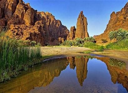وادي الديسة.. كوكب جمال الطبيعة