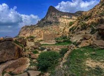 اكتشف محمية جبل شدا التي تعد من أغنى المحميات في المملكة!