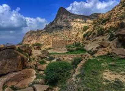 Explore the Beauty of Shada Reserve Mountain