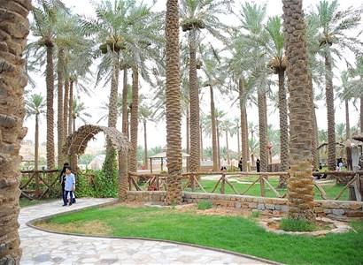 Wander the Astonishing Sites of Al Qassim Region (2 Days Tour)