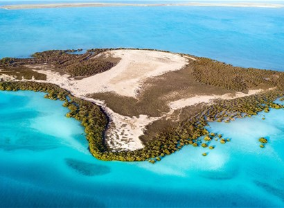 Discover the Farasan Islands Reserve with its Picturesque Nature (1-Day Tour)